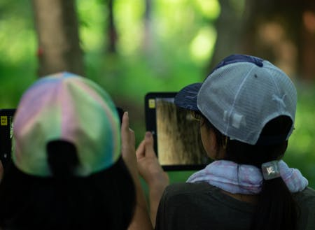 学びも森の環境を活かす