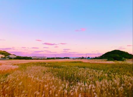 時には夕焼け見ながらお散歩しましょ。