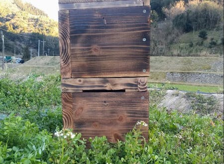他にもニホンミツバチの巣箱作りワークショップを行ったり。