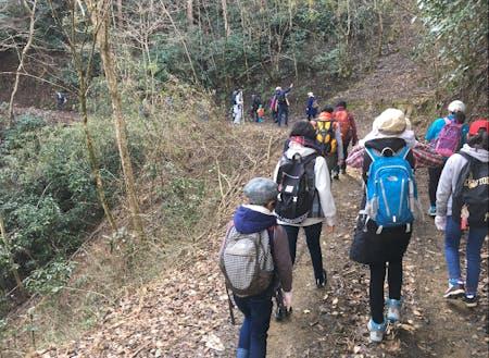 親子登山 初心者でも登れるコースを高千穂山の会さんが案内