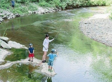 清流日本一の川で川遊び。混み合うことがなくプライベート空間で思う存分、川遊びができます。