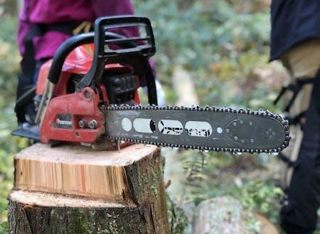 施設を拠点に、森林体験などの体験型コンテンツを提供予定。