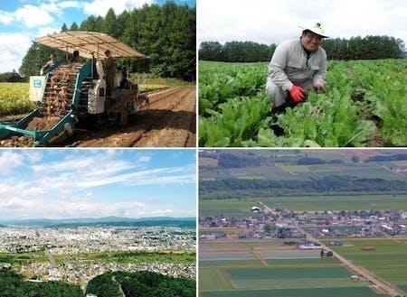 上段:端野自治区農業部門  /下段左:北見自治区遠景 /  下段右:端野自治区遠景