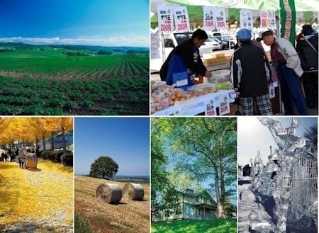 上段:端野自治区農業部門  /下段:北見市内景観