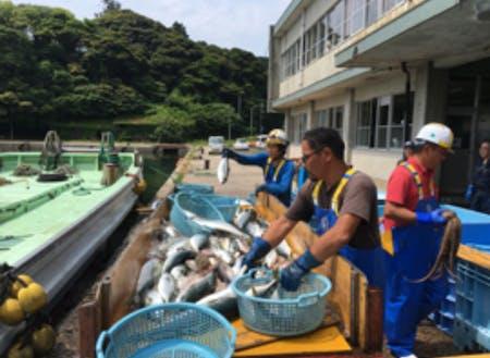 休みの日は市場で魚を仕入れ