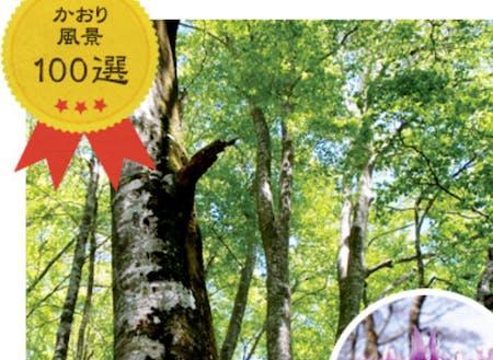 ①水源の森 ②かおり風景 ③残したい日本の音「三百選の里」
