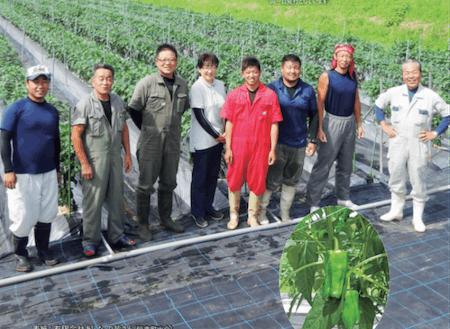 若手農家の育成を重視している農業法人「あした」