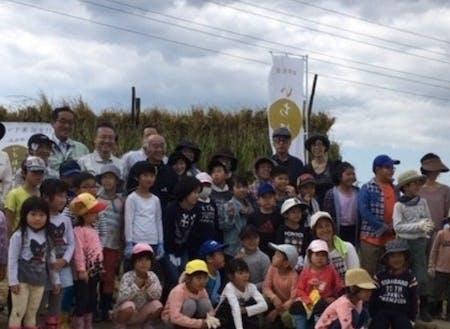 ふるさと納税を活用した稲刈り体験