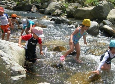 自然の川で泳ぐ夏