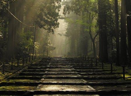 国史跡白山平泉寺の神秘的な景観
