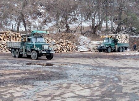 岩泉ではまだ現役で、ボンネットトラックが林業を支えています