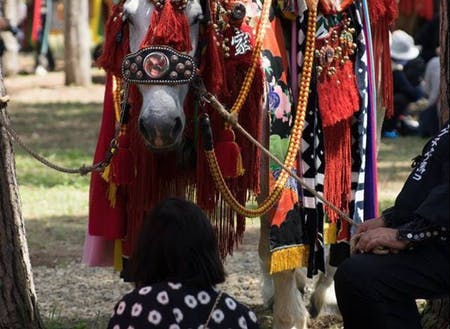馬と人との生活