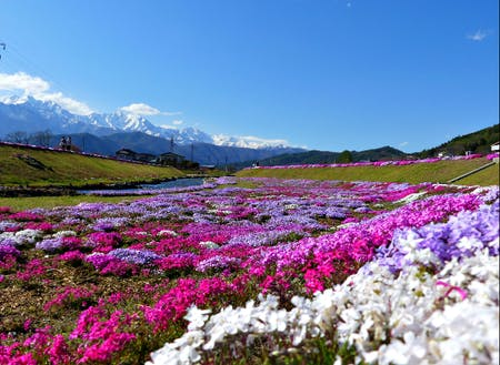 ふぉとじぇにっくな風景がいっぱい!四季を通してカメラ好きにはたまりません!