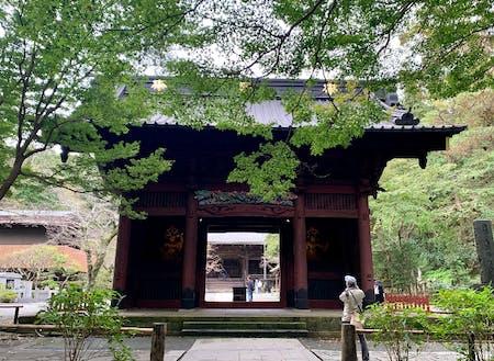 鎌倉の妙本寺(お気に入り)