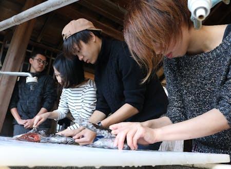 漁業のまち尾鷲市で多種多様な魚の捌き方を教わる参加者