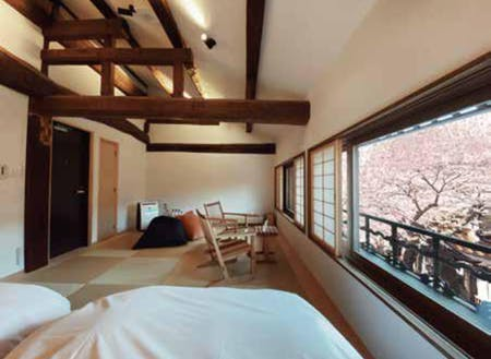 桜を楽しめる一日二組限定の宿、須貝邸