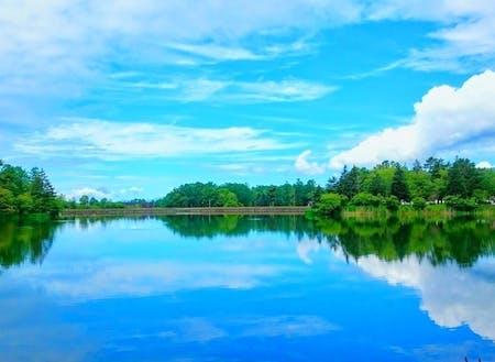 蓼科湖 市内には約1万戸の別荘が蓼科(たてしな)などにあり、季節を問わず多くの人が訪れます。