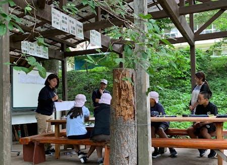 """地域の小学校で""""学びの森づくり""""授業も"""