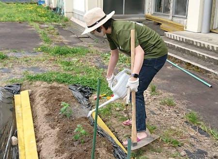 畑の水やり。まだ土地が余っているので開墾や作付けもできますよ