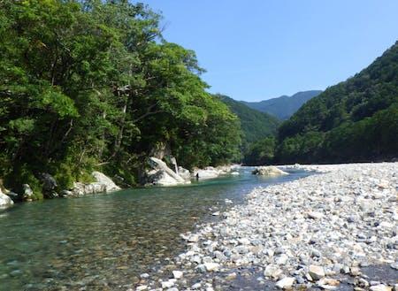 銚子川の様子