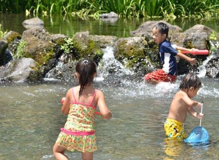 暑い季節は子供たちの格好の遊び場です。