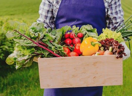 高品質!多種多様な農産物が生産されています!