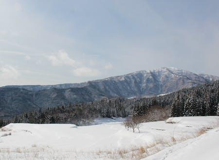 雪化粧を施した県下最高峰の氷ノ山