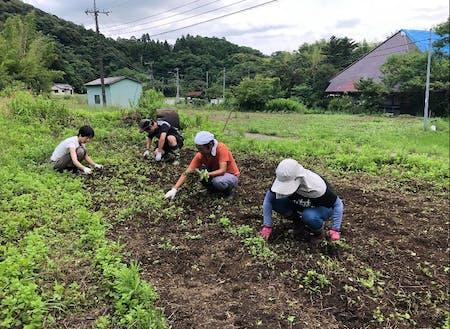 地元農家を援農体験