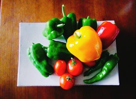 家庭菜園でも美味しいがたくさん!