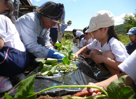 人口3000人に満たない島でのふるさと教育。子どもは地域みんなで育てます。
