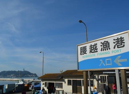 江ノ島が正面に見える腰越漁港。腰越漁港のアジフライは最高!