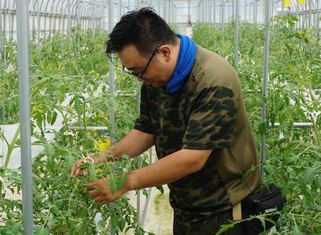 水資源から着想を得た次世代農業技術をご体感ください!