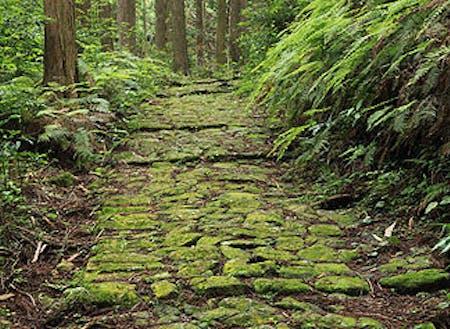 世界遺産にもなっている「熊野古道」
