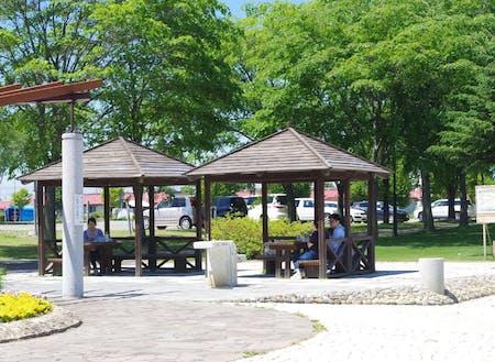 お天気の良い日は、パンやおにぎり持参で公園ランチもオススメ♪