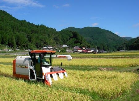 田園風景が広がります。
