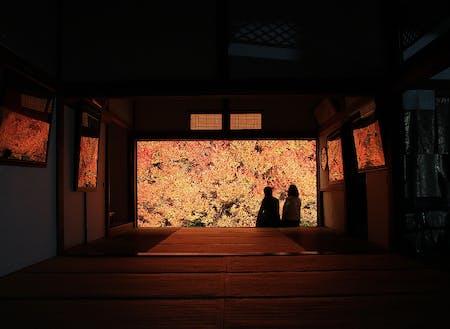 秋の風物詩「安国寺のドウダンツツジ」