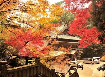 新宮地域にあるお寺の紅葉