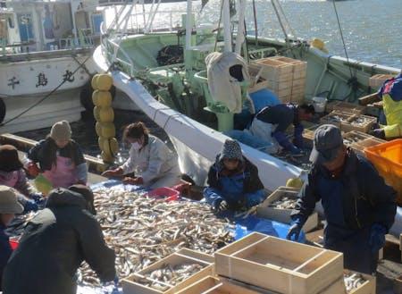 漁業も盛んな町です