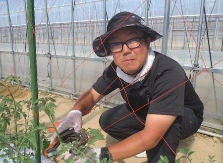 白岩 洋氏(新規就農2年目:ミニトマト農家)