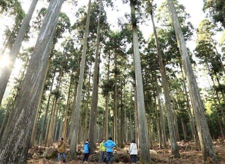 西粟倉村は面積の約93%が森林の地域です