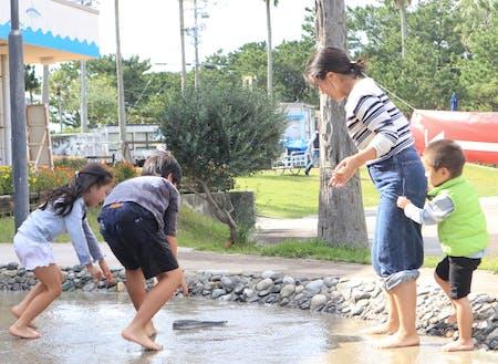 浜名湖の畔にある「海湖館」では魚の掴み取りが出来ます。