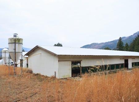 山の上にある養鶏場が挑戦のフィールドです。