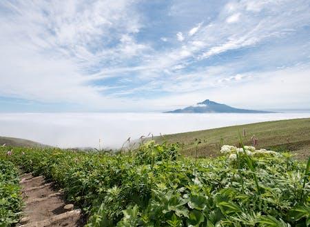 観光(トレッキングコースからの自然・景色)