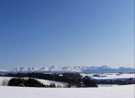 冬の十勝岳連峰と美瑛の丘