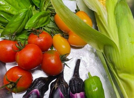 泊りに来てくれたあかつきには朝採れの家庭菜園野菜もどうぞ^^