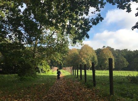 子供との外遊びはオランダの移りゆく季節の変化を感じる絶好の機会。自然の中にどっぷり浸かる。平日でも子育てするパパの姿が日常的